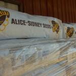 alice -sidney seeds 2